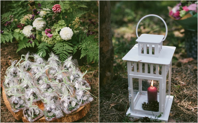 Vestuvių miške planavimas
