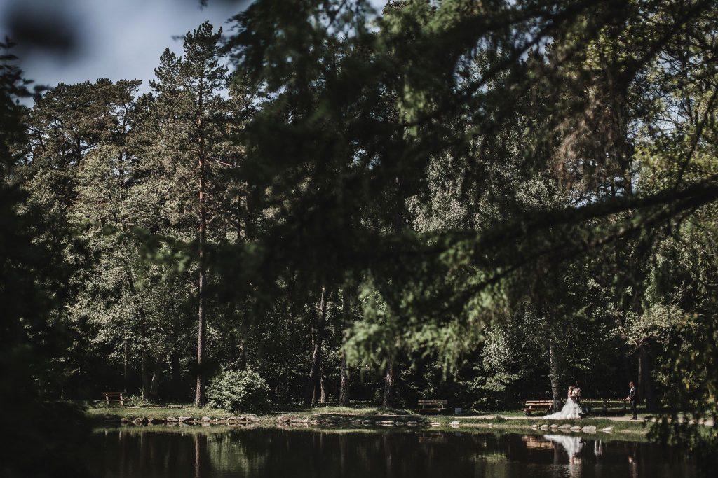 Vestuvių parkas